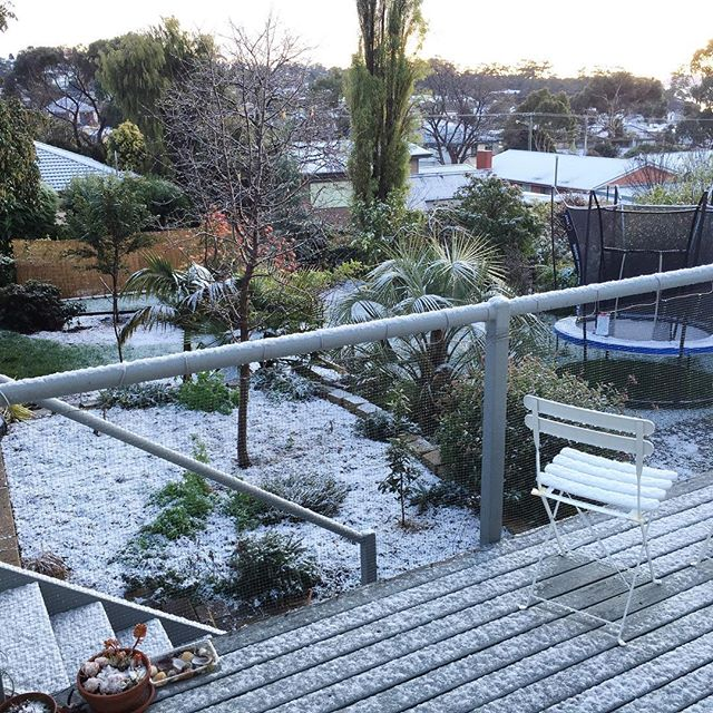 Snow! I can only just remember the last time this happened, about 29 years ago. ❄️⛄️??